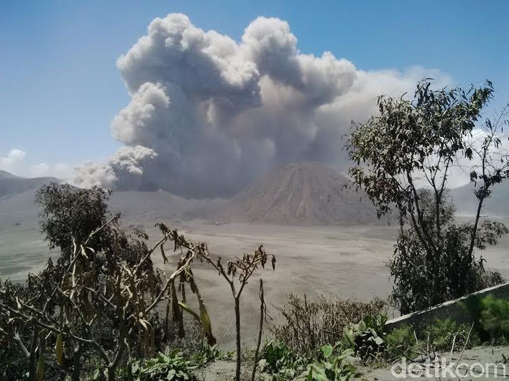 Abu Vulkanik dari Kawasan Bromo, Bandara Malang Ditutup Hingga Senin