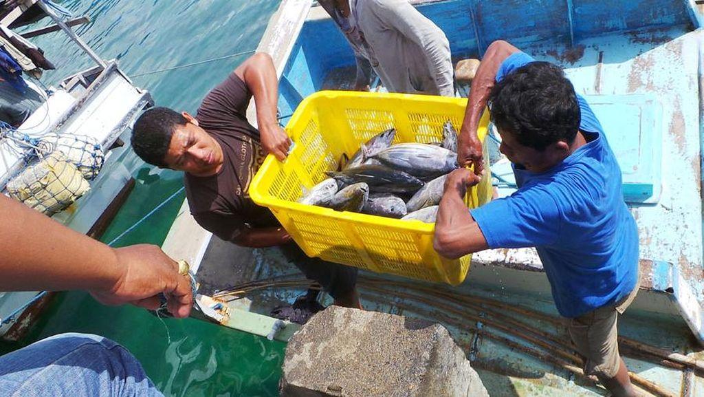 Semangat Para Nelayan di Buton