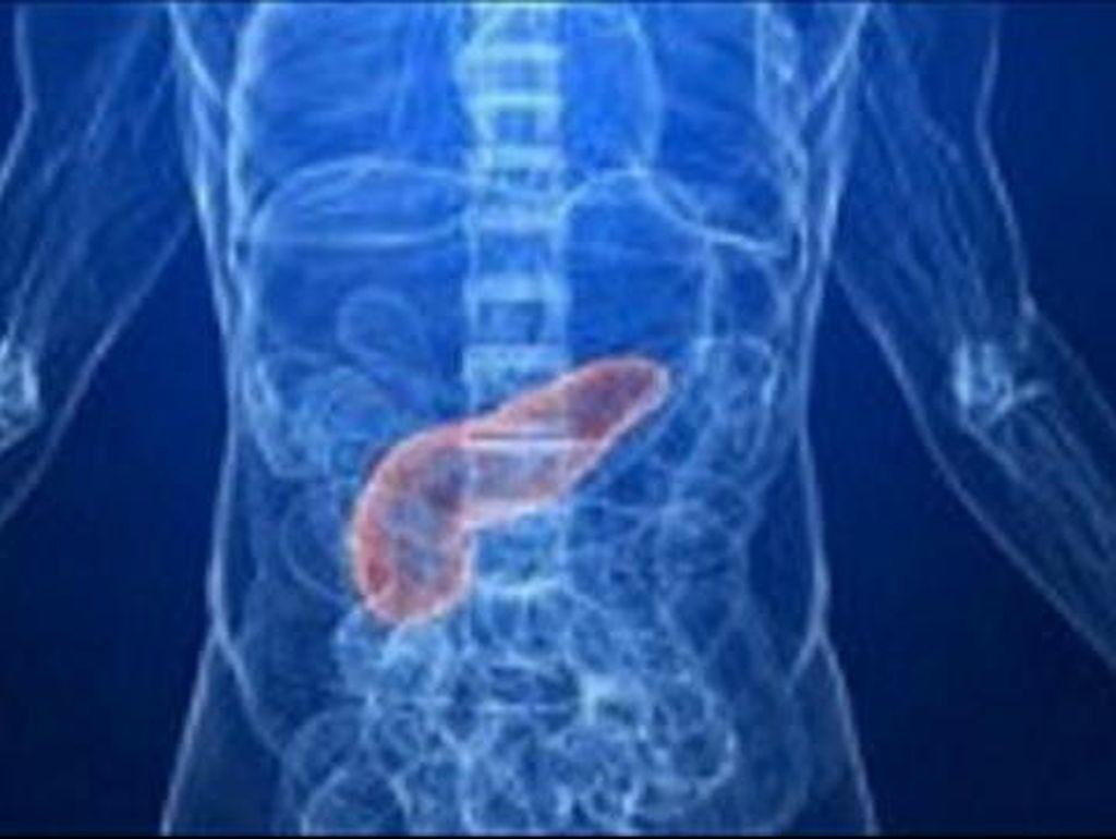 Duh! Ternyata 6 Kebiasaan Sehari-hari Ini Membahayakan Pankreas