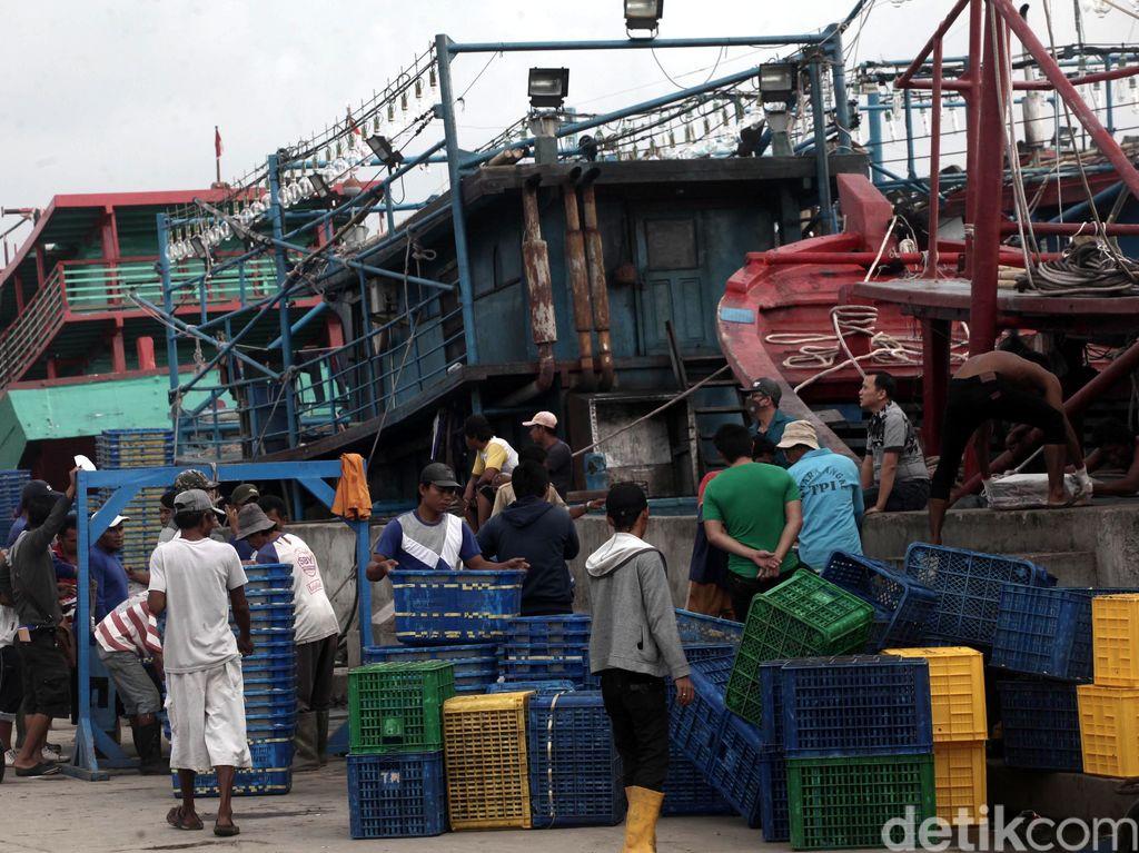 Pemerintah Fokus Bangun Industri Perikanan di 12 Pulau Terluar
