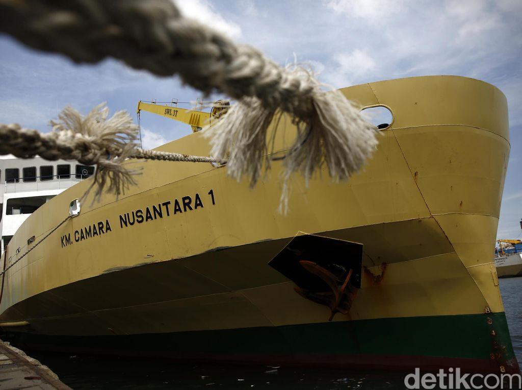Kapal Ternak Tetap Operasi, Jangan Khawatir Pasokan Sapi Seret