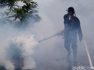 Jumlah Penderita Demam Berdarah di Surabaya Menurun