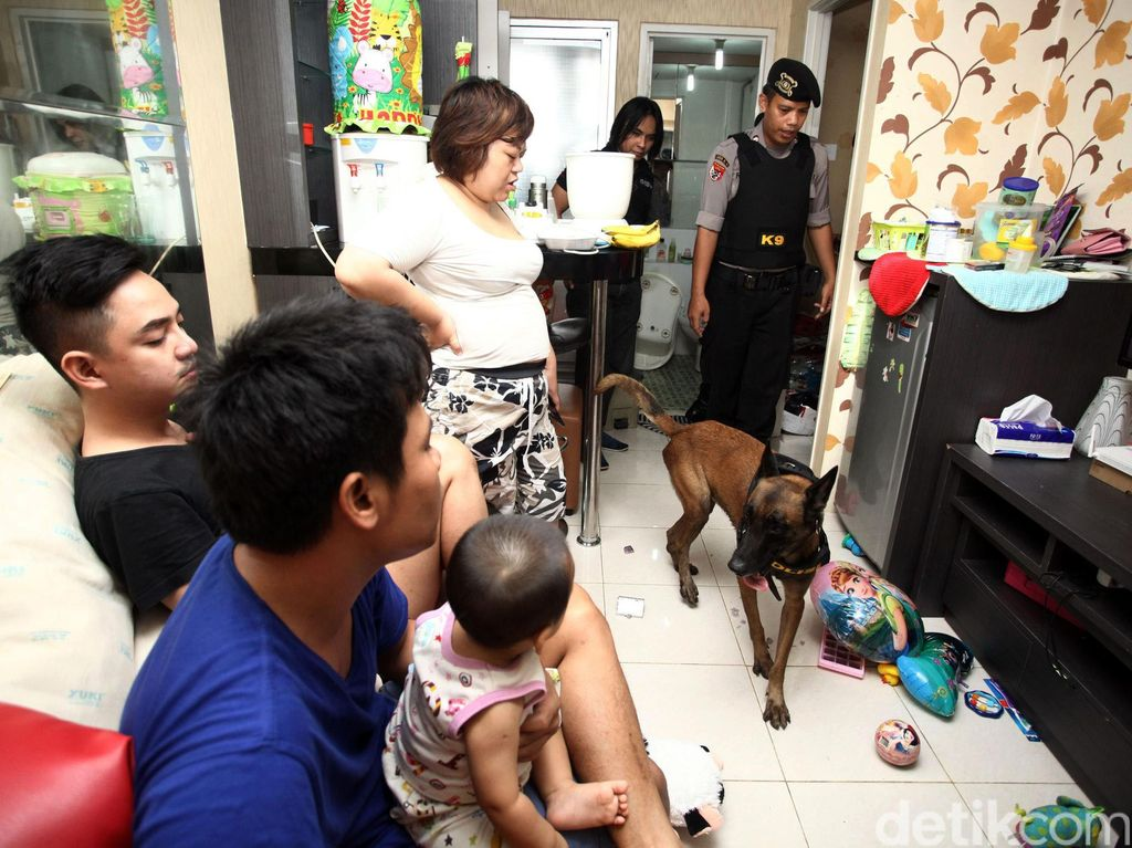 Razia Narkoba, BNN Libatkan Anjing K9