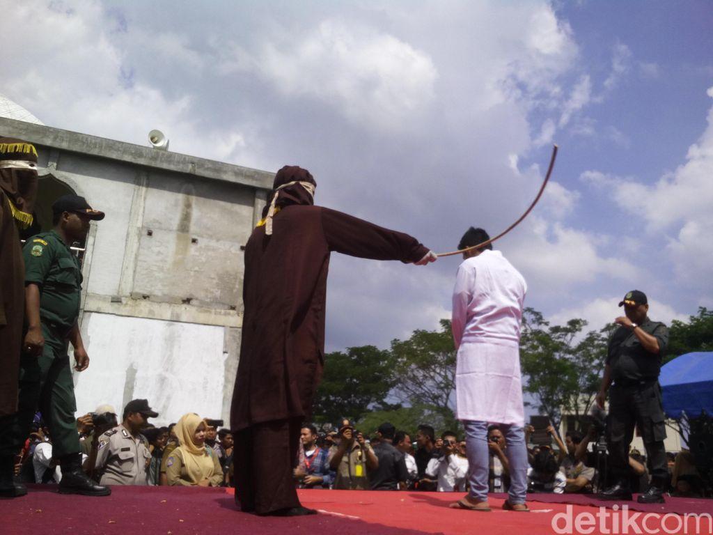 Pemburu Satwa Dilindungi di Aceh Dihukum Cambuk, BKSDA: Semoga Bikin Jera