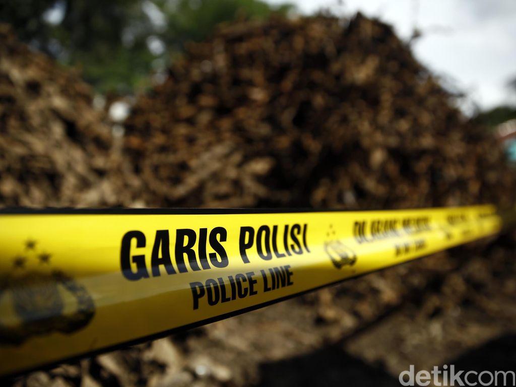 Polisi Tangkap Kapolsek di Aceh yang Diduga Terlibat Illegal Logging