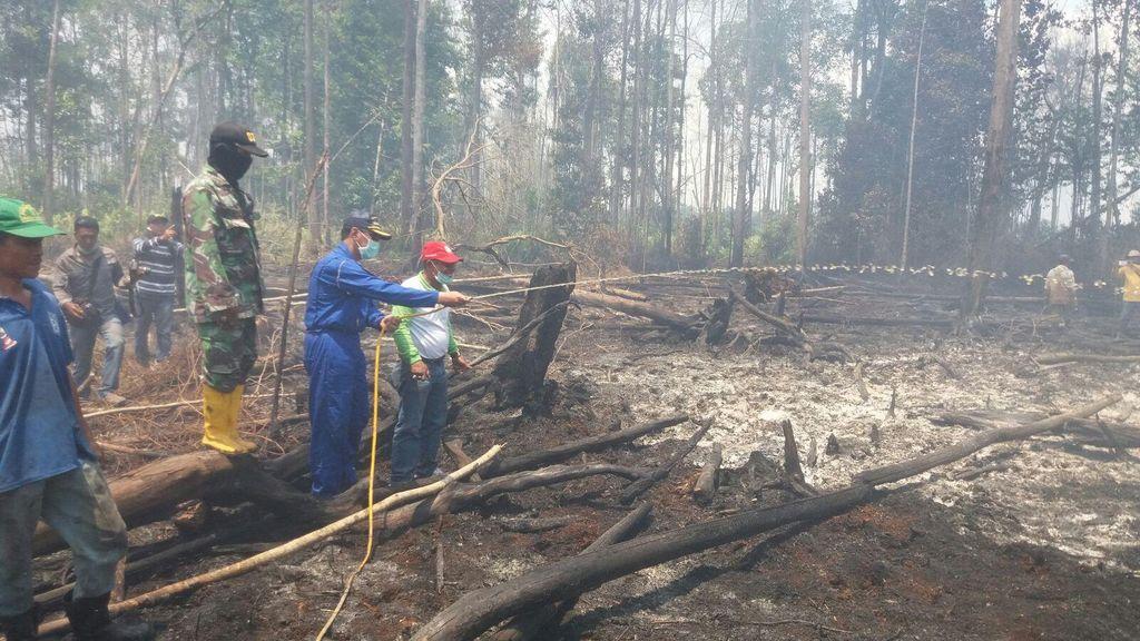 Ini Senjata Jokowi Cegah Pembakaran Hutan