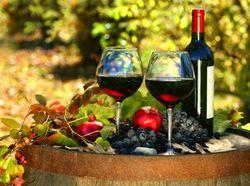 Bisnis Minuman Beralkohol Diklaim Setor Rp 6 T ke Negara