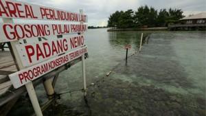 Dulu Perusak, Kini Pelestari Terumbu Karang di Pulau Pramuka