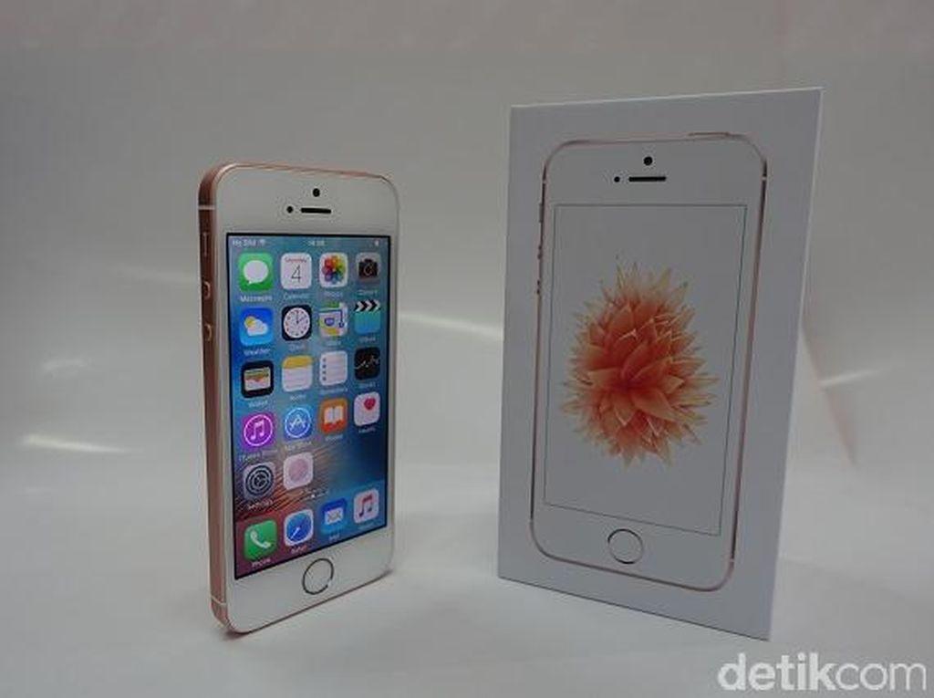 Membongkar iPhone SE di Jakarta