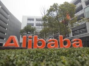 Lawan Krisis Pangan, Alibaba cs Buat Alat Pertanian Pintar