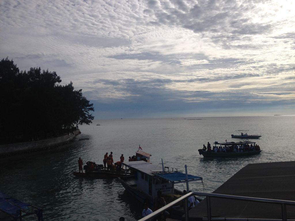 Resmikan Tempat Suaka, Jokowi Lepas Penyu dan Elang di Kepulauan Seribu