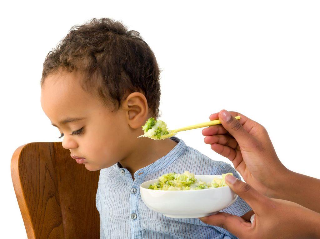 Siapa yang Anaknya Susah Makan? Yuk Konsultasikan di Sini