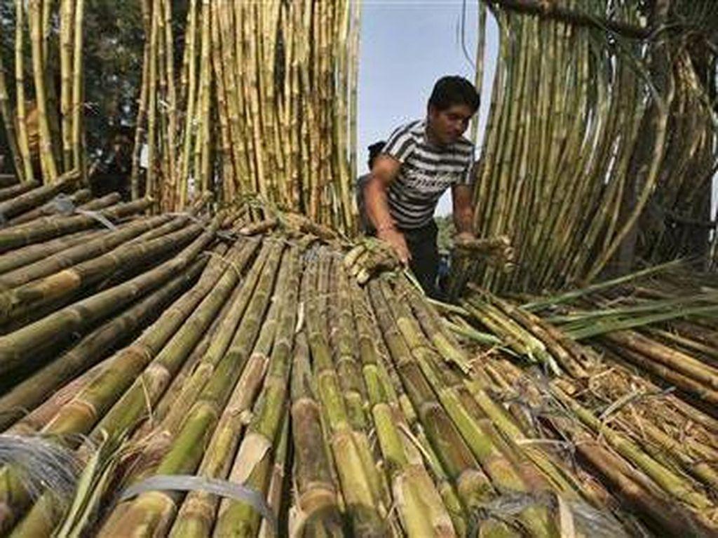 Petani Keluhkan Impor Gula yang Bocor ke Pasar Tradisional