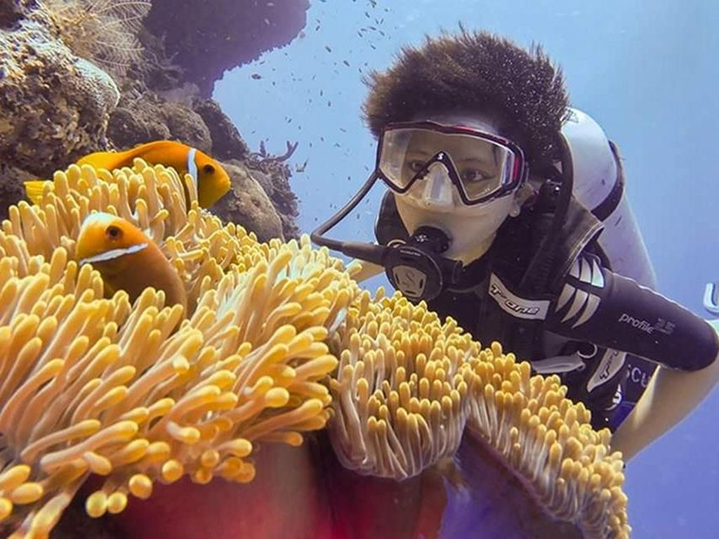Alam Bawah Laut Maladewa, Terbukti Indahnya!