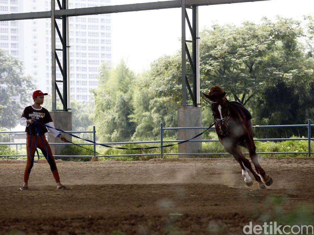 5 Rekomendasi Olahraga Ala Nabi Muhammad, Mau Coba?
