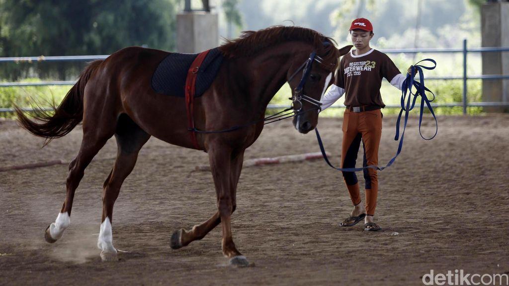 Soal Kuda-Kuda di Pulomas, Pordasi DKI Bakal Tempuh Jalur Hukum