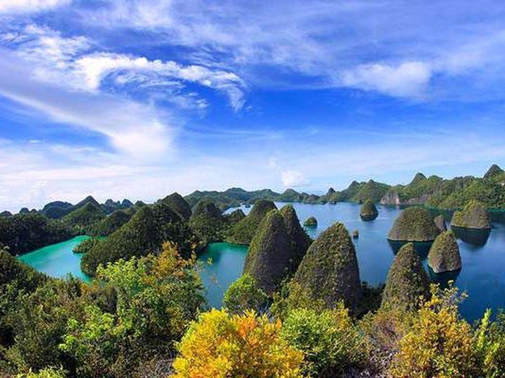 Agen Travel Diminta Pakai Pemandu Lokal Raja Ampat