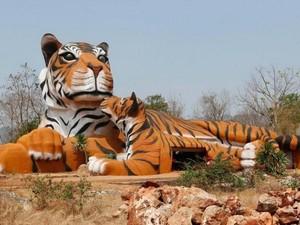 Menengok Kuil Harimau yang Kontroversial di Thailand
