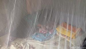 Ini yang Jadi Batu Sandungan Eliminasi Malaria di Wilayah Timur Indonesia