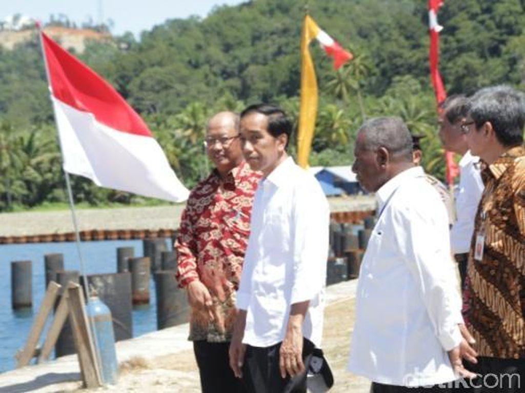 Jokowi Tinjau Pembangunan Pelabuhan Peti Kemas Depapre Jayapura