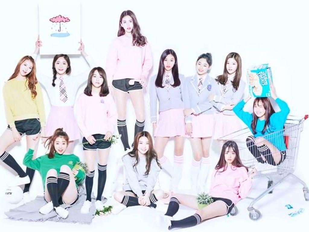 5 Grup K-pop Jebolan Acara Survival yang Meraih Kesuksesan Besar