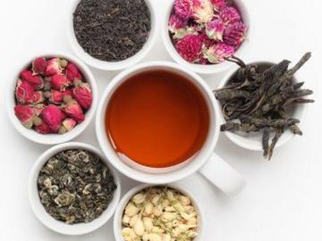 Minum Teh Herbal Terbukti Dapat Meningkatkan Memori