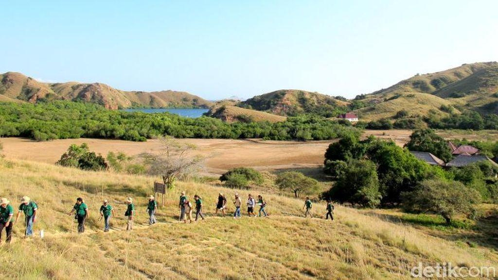 Pulau Rinca Diusung Jadi Jurassic Park Indonesia