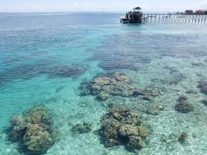 Potret Keindahan Pulau Derawan