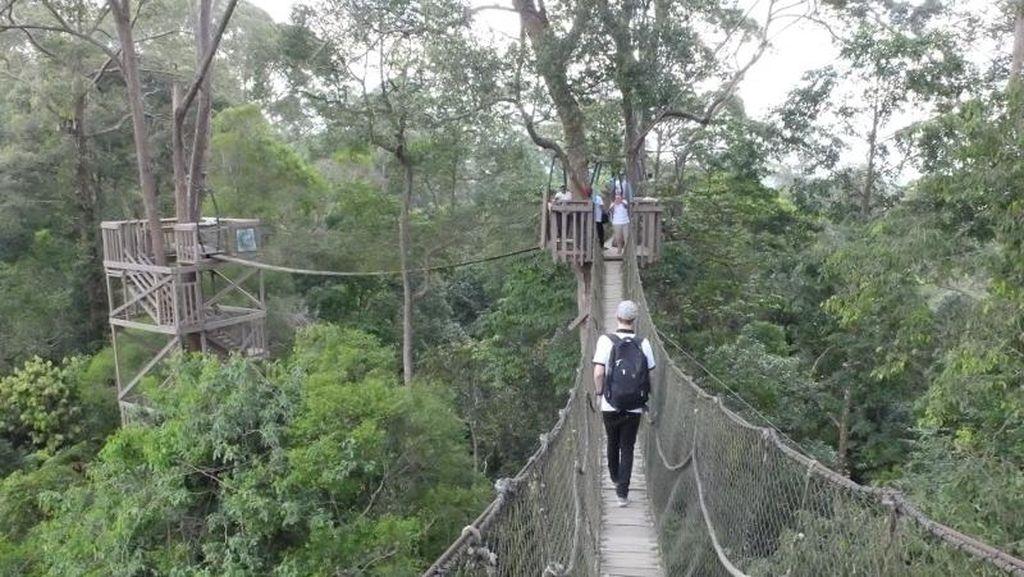 Potret Jembatan yang Menegangkan di Kutai Kartanegara