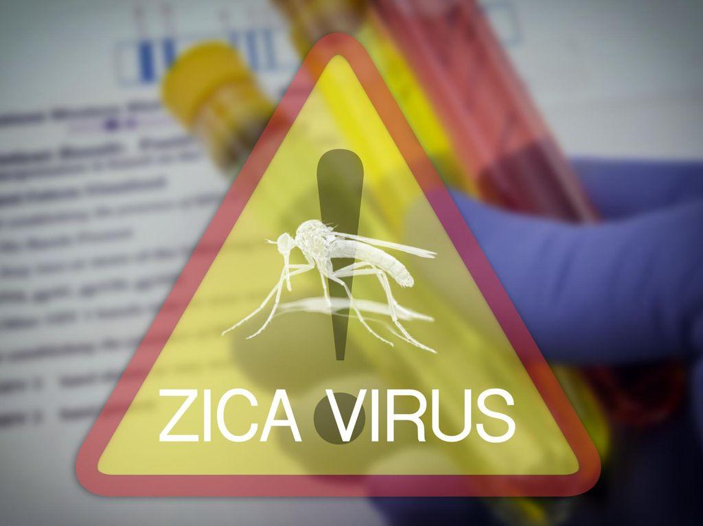 Kasus Mikrosefali Akibat Zika Ditemukan di Haiti dan Guatemala