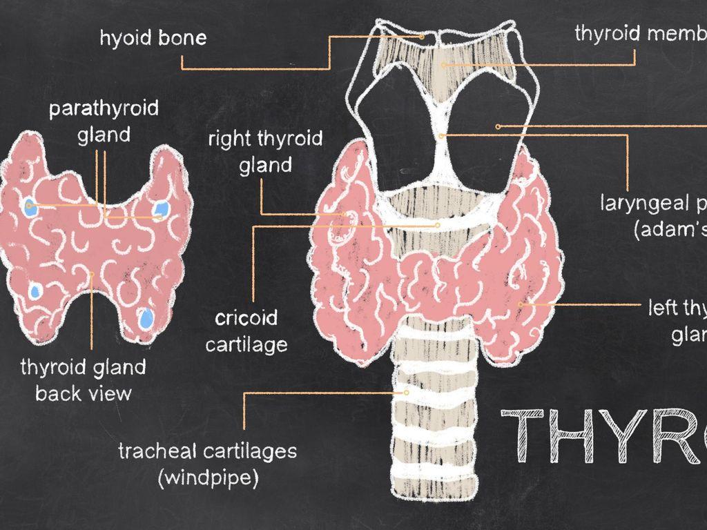 Ternyata Ini Asal Mula Ada Mitos Bola Mata Bisa Keluar karena Hipertiroid