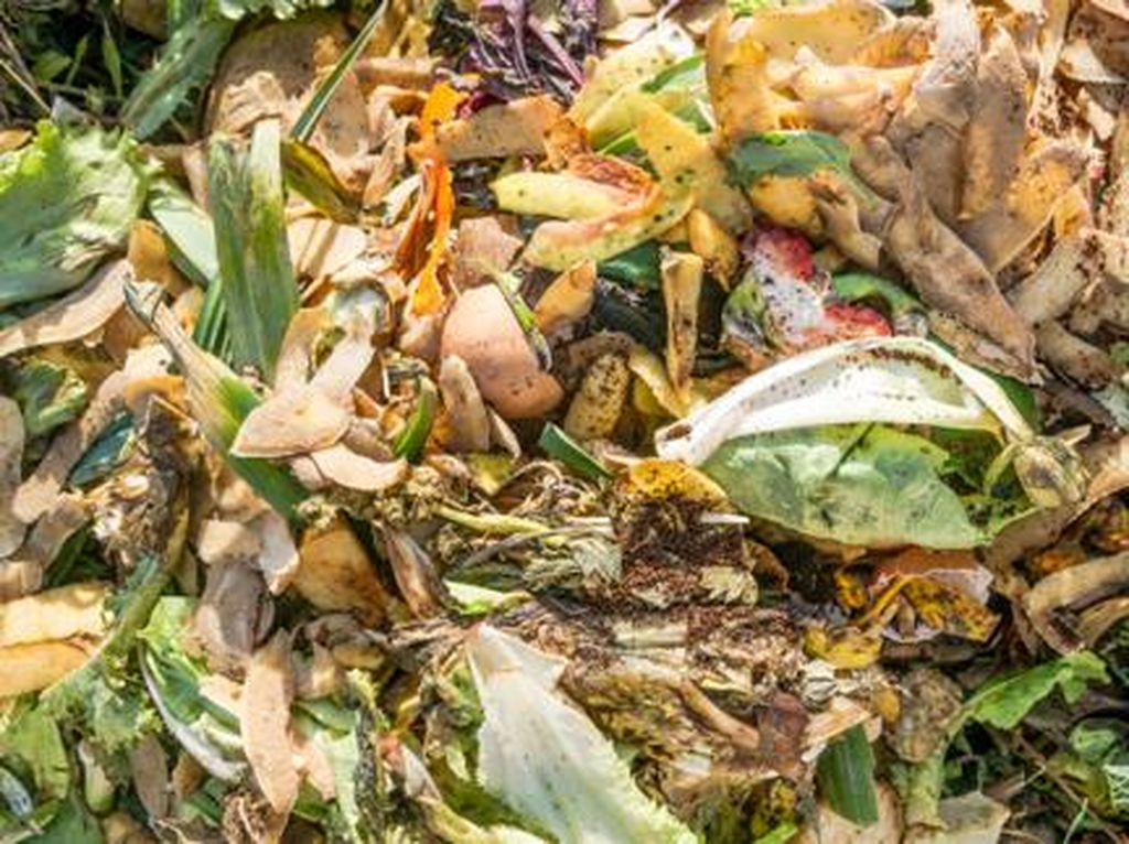 Setiap Hari Malaysia Buang 15.000 Ton Limbah Makanan