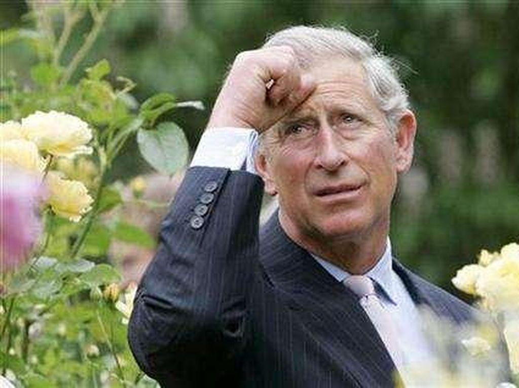 Positif Corona, Pangeran Charles Tertular dari Pangeran Albert?