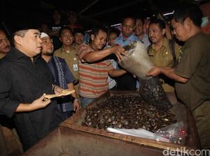 Akom Borong Jengkol di Pasar Cibitung