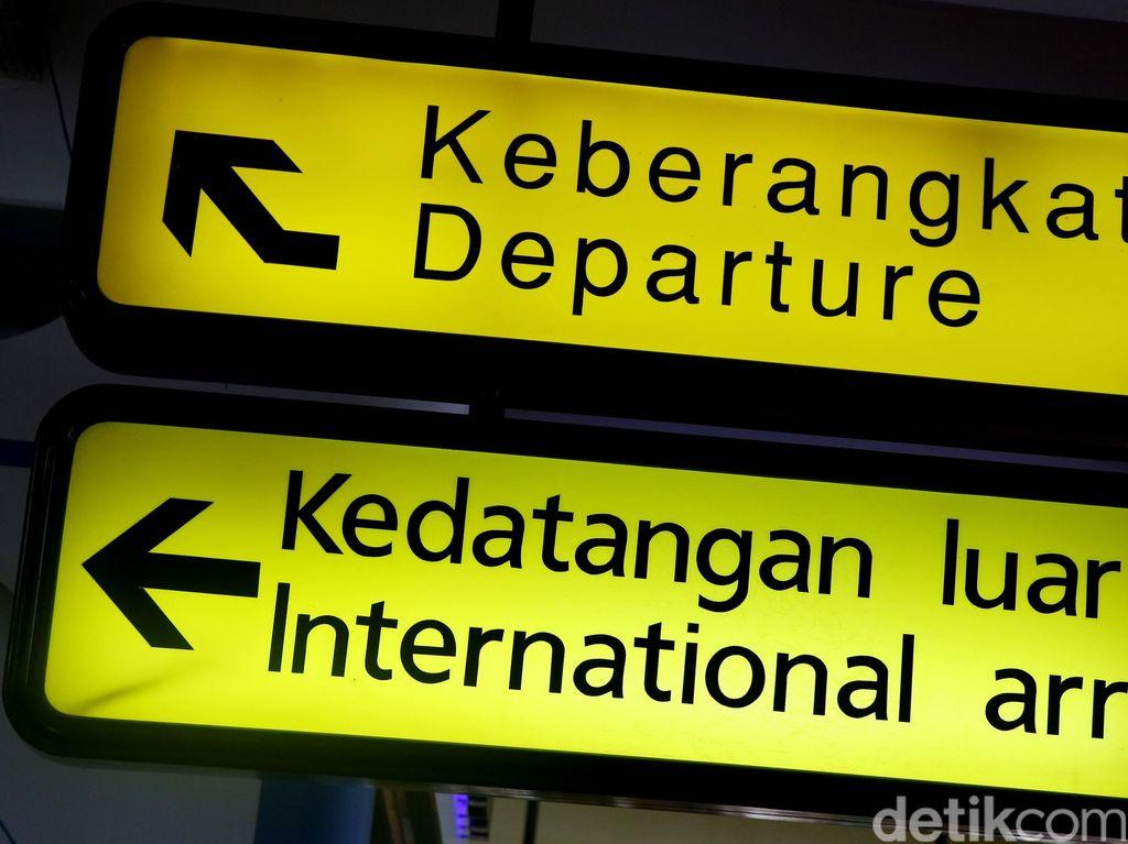 Tak Disangka-sangka, Ini Rute Penerbangan Internasional Tersibuk di Dunia