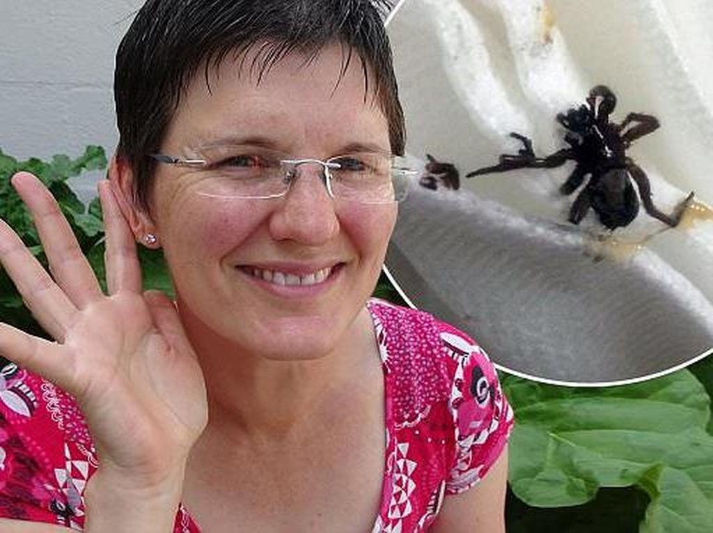 Telinga Wanita Ini Nyeri Pasca Berenang, Ternyata Ada Laba-laba di Dalamnya