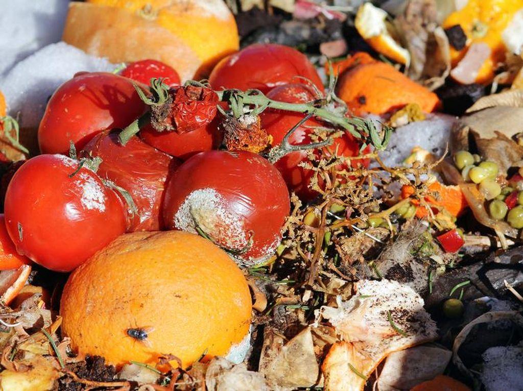 Lakukan Cara Praktis Ini untuk Kurangi Limbah Makanan di Rumah (1)