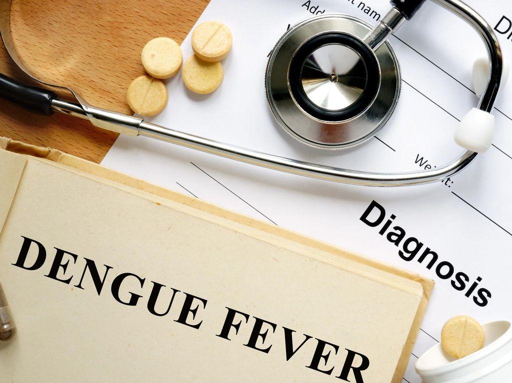 75 Warga Bekasi Terjangkit Penyakit DBD