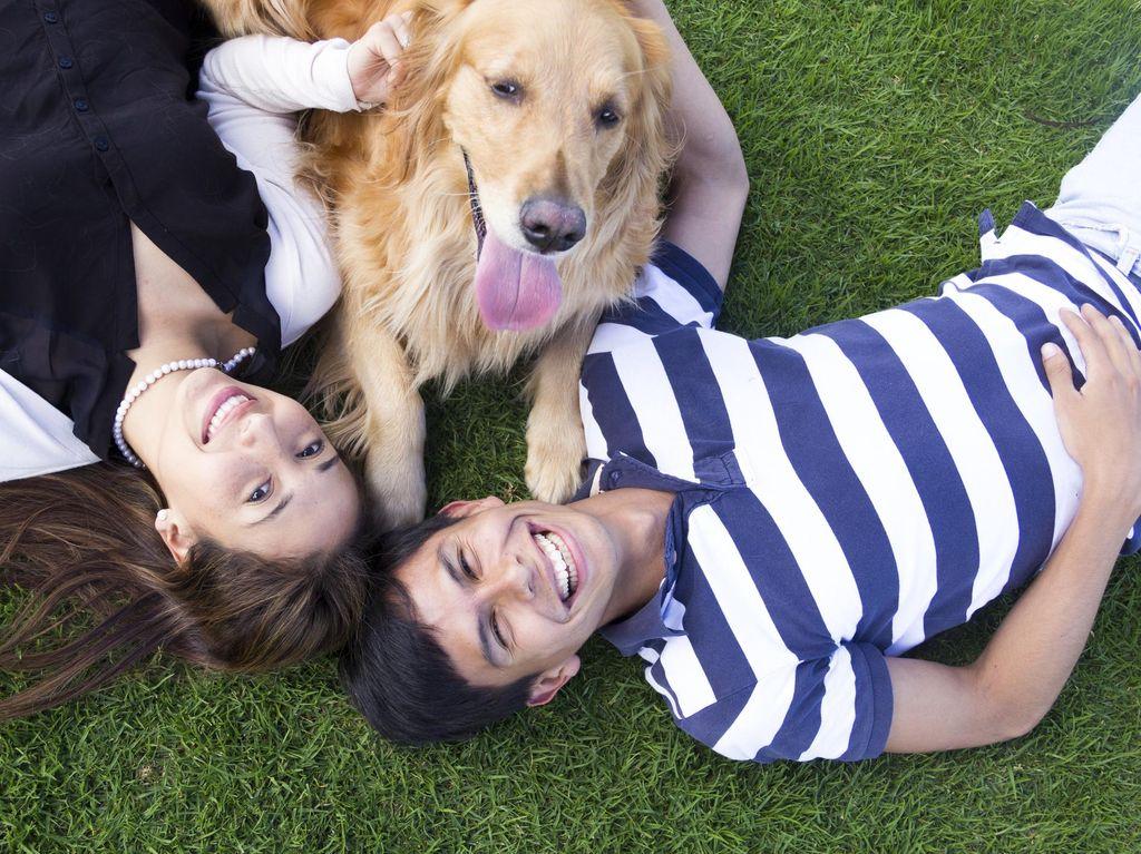 Punya Binatang Peliharaan Bisa Bantu Anda Temukan Calon Pasangan