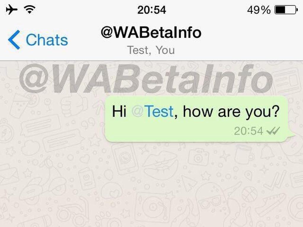 WhatsApp bakal Boyong Fitur Colek Teman