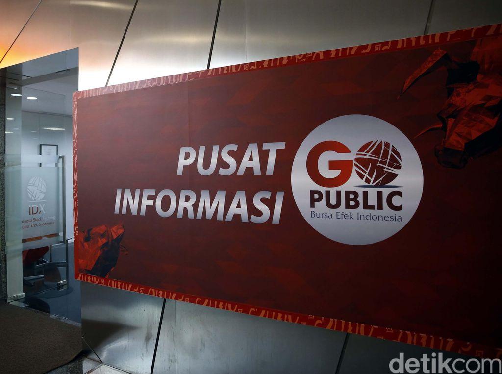 IPO, Freeport Indonesia Siap Jual 30% Saham ke Publik