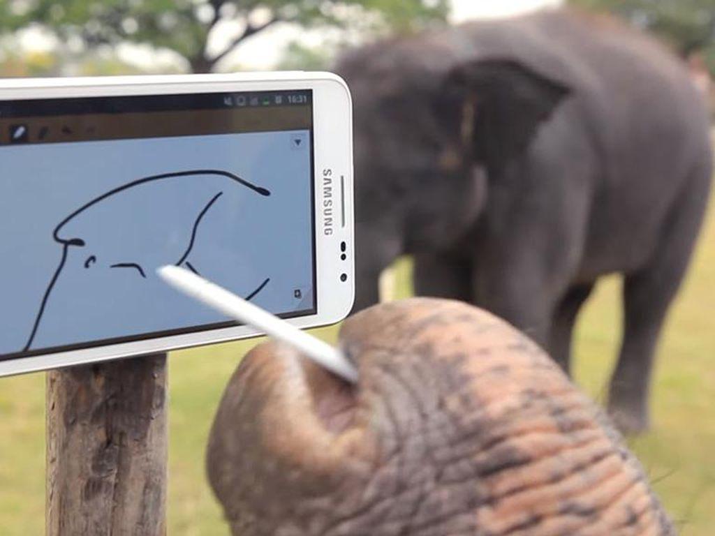 Seekor Gajah Memukau dengan Galaxy Note
