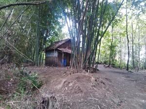 Mbah Karep, Tinggal Sendiri di Gubuk dengan Kanker Kulit