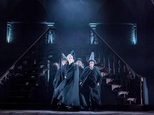 Rekor! Harry Potter and the Cursed Child Raih Piala Terbanyak di Olivier