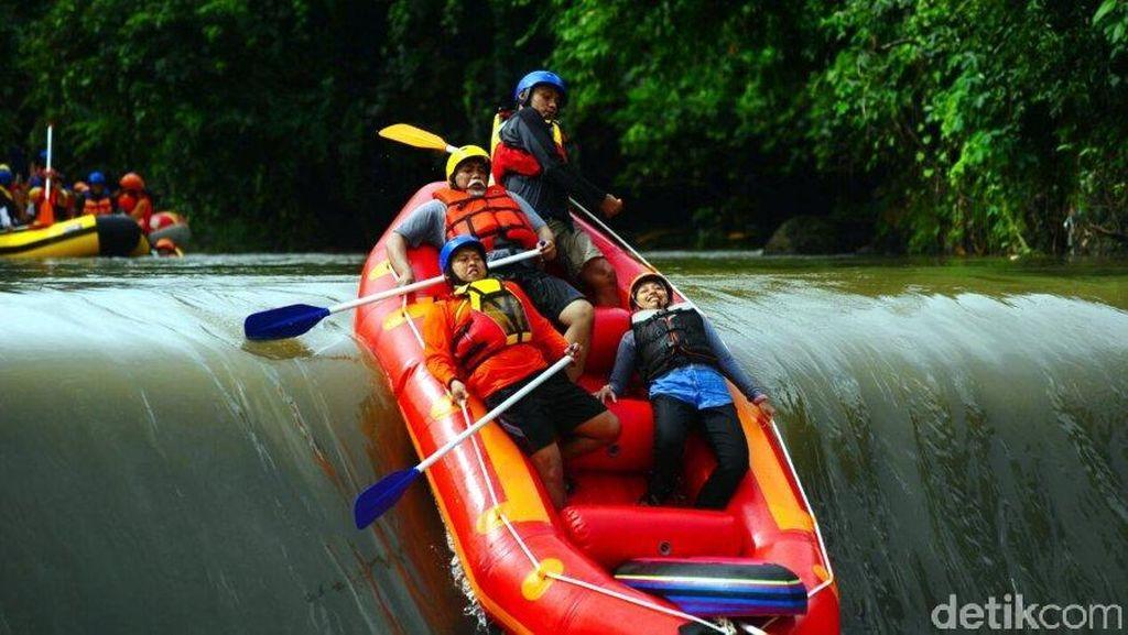 Rafting Seru Taklukkan Derasnya Sungai Kalibaru, Banyuwangi
