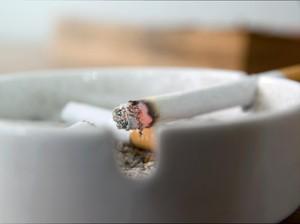 Si Kecil Melihat Orang Tuanya Merokok, Apa Dampaknya Ya?