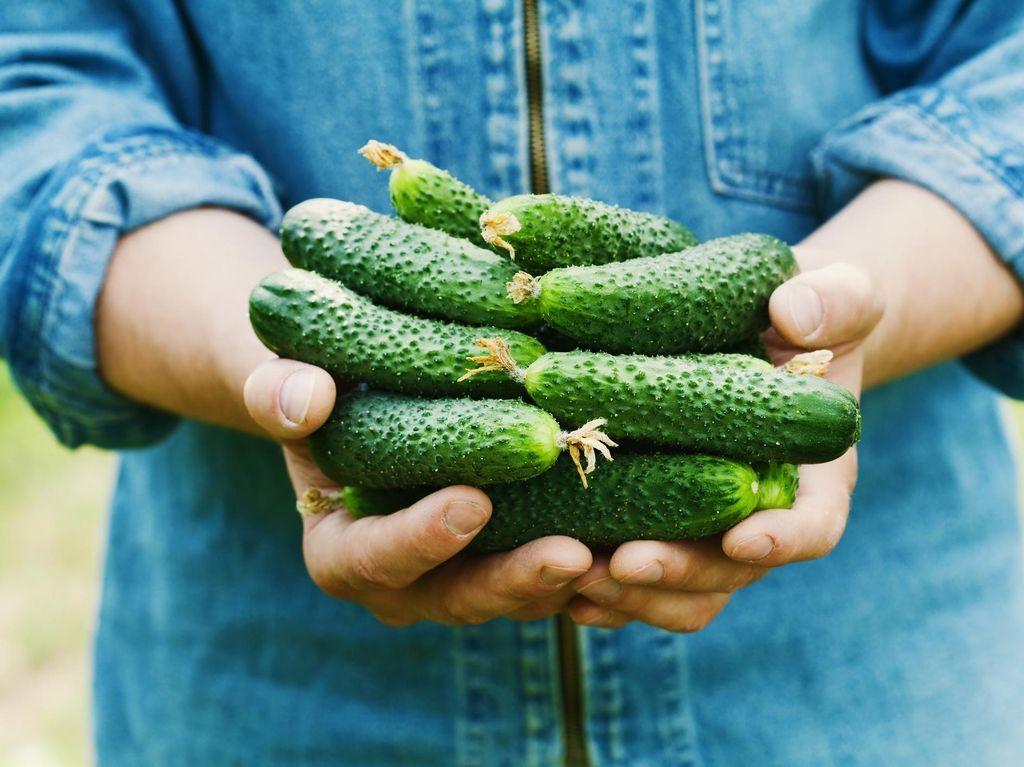 Kalau Rutin Konsumsi Produk Organik Ini Manfaat Baik yang Didapat (2)