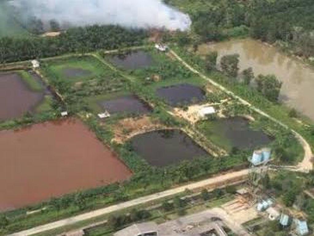 BNPB: 232 Hotspot Terdeteksi, Kebakaran Hutan Terkendali