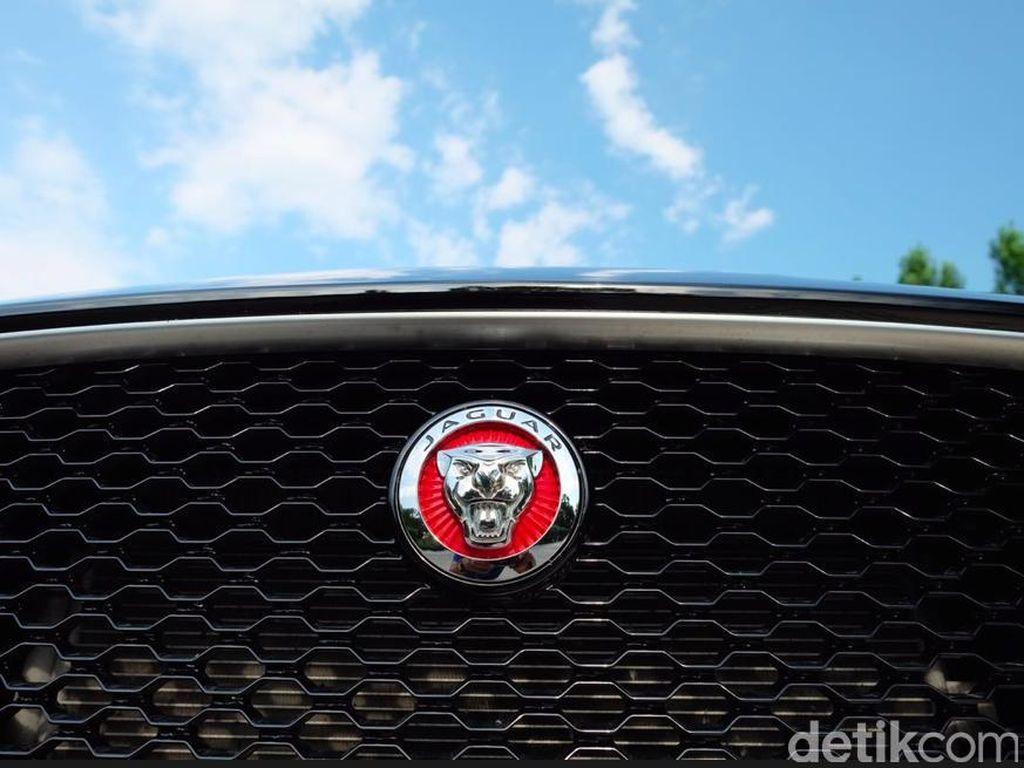 Sstts, Jaguar Siapkan Hatchback Listrik