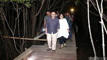 Sudirman Said Susuri Dewi Mangrove
